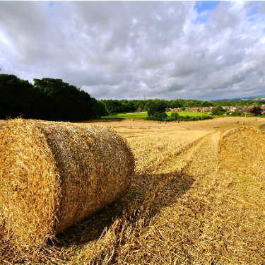 Hay Bales in Up Holland by Jeffery Webb